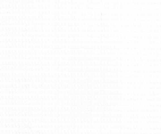 CORONA 0325 White