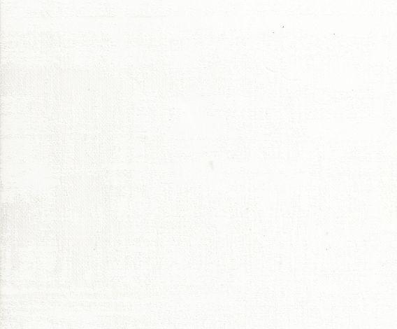 SHADE 1089 White