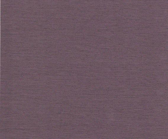 PRESTIGE 630 Violet