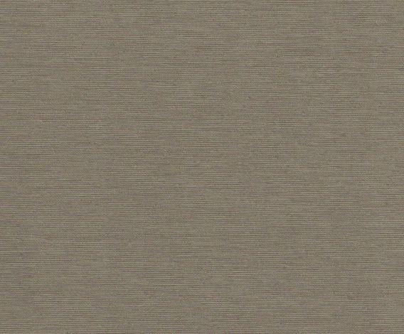 PRESTIGE 633 Grey